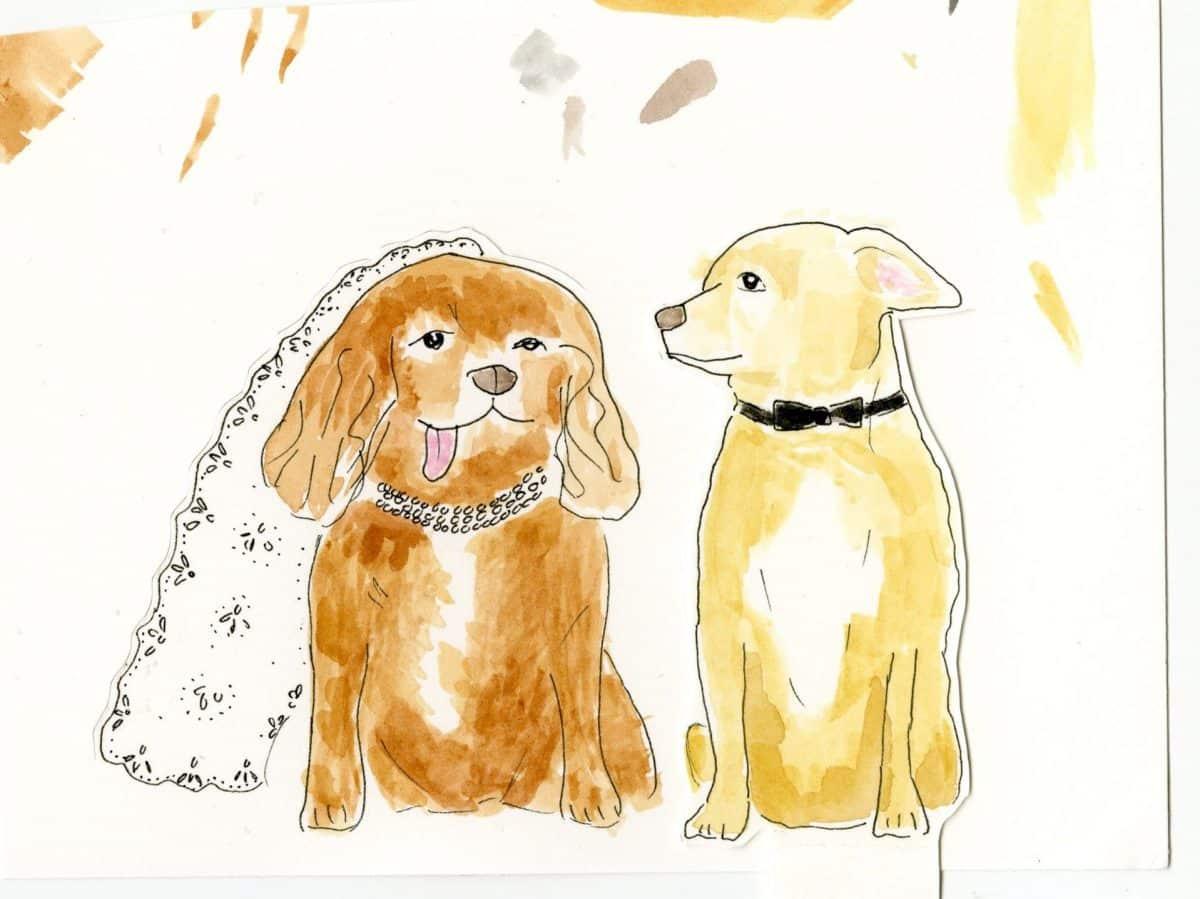 toast-and-finn-dogs001