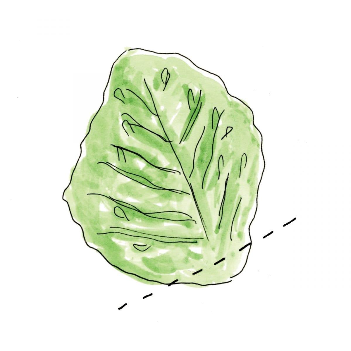 veggie-wrap_01