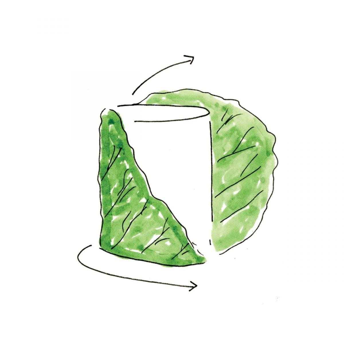 veggie-wrap_02