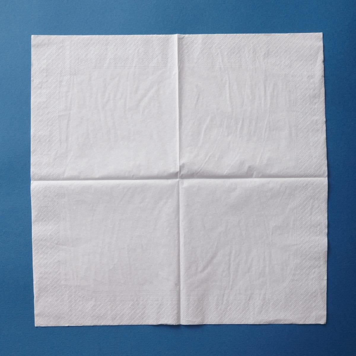 how-too-eye-shirt-napkin-02