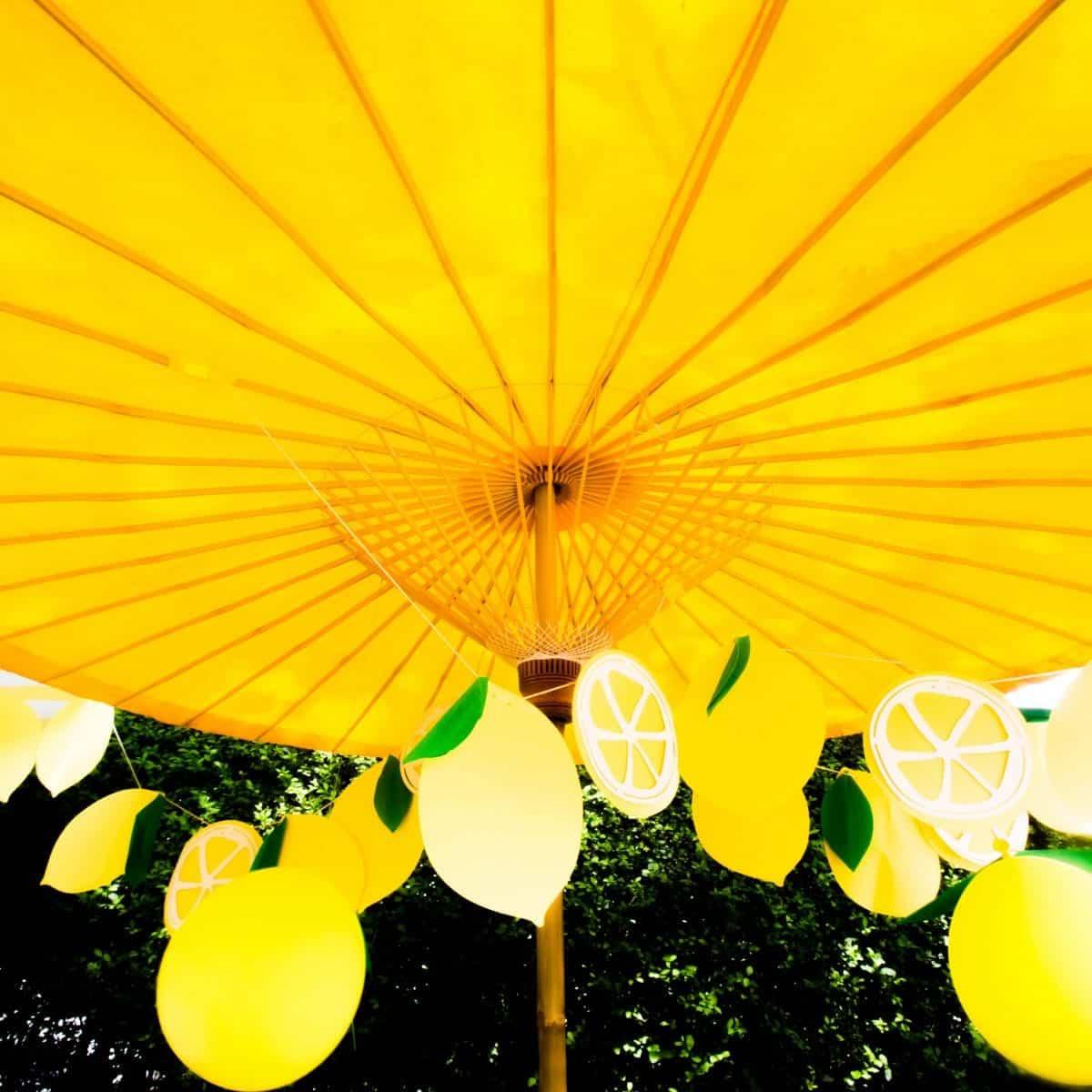 Darcy Miller Designs_Lemonade Stand