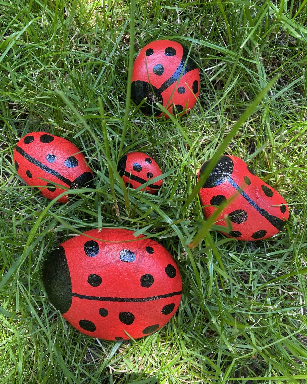 Darcy miller designs, camp darcy, rocks, ladybug